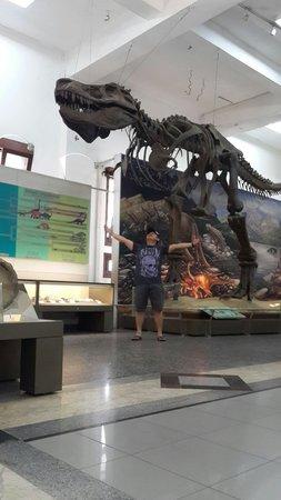 Geologisches Museum: Tempat ilmu pengetahuan dan pendidikan sangat baik untuk pelajar.