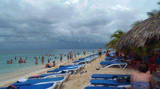 Mr Sanchos Beach Club Cozumel: Great times.