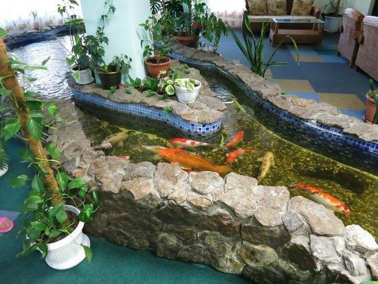 Antarius Guest House: Рыбки в зимнем саду