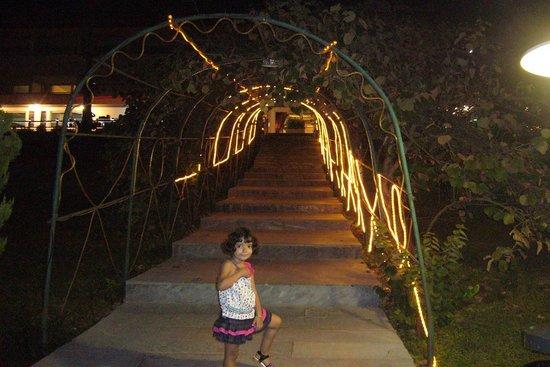 Salar Darreh Hotel: night