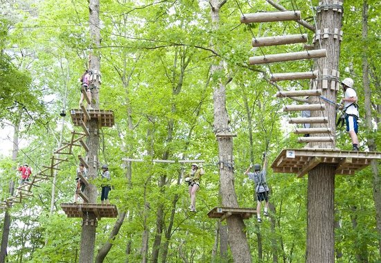 ‪‪Frontier Town‬: High Ropes Adventure Park at Frontier Town‬