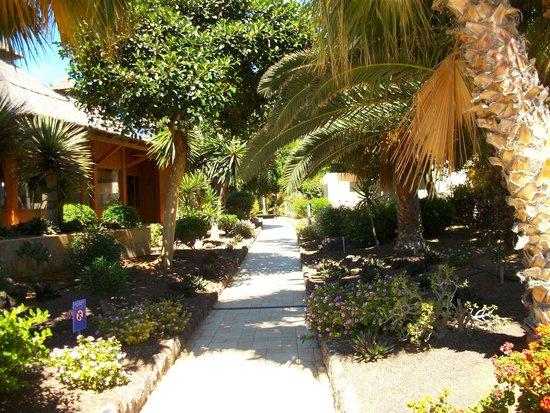 Elba Carlota Beach and Convention Resort: Gardens