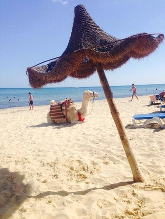 إيبيروستار شيش خان: The beach