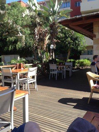 Elba Carlota Beach and Convention Resort: Shady spot