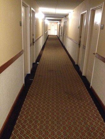 إديسون هوتل آند كونفرانس سنتر: Hall way carpets were stained