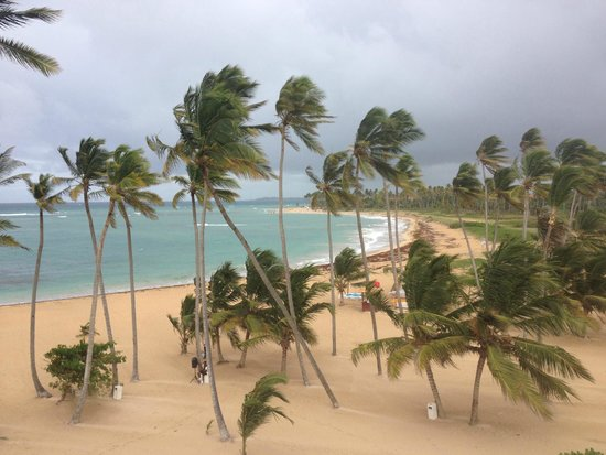 Breathless Punta Cana Resort & Spa: Balcony view