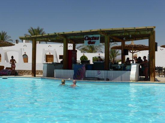 منتجع وكازينو رويال بيتش: Cactus pool bar