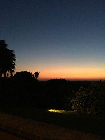 Son Terrassa: View