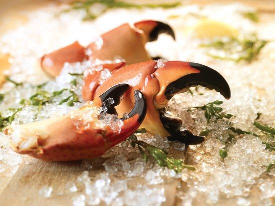 Florida's Fresh Grill: Florida Stone Crab