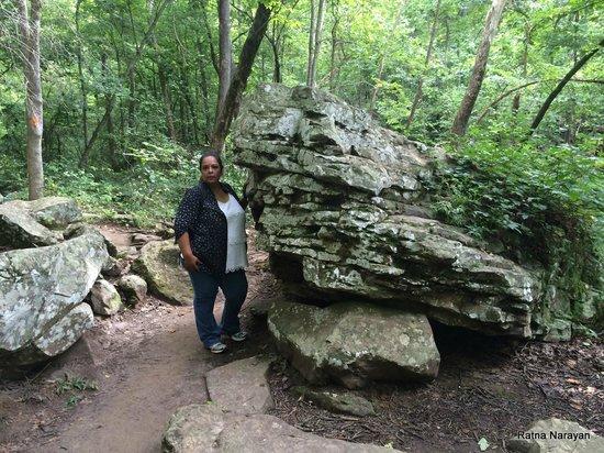 Petit Jean State Park: cft
