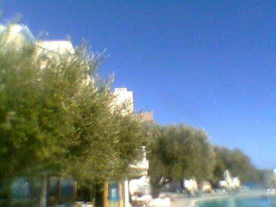 هوتل بايا ديلي سيريني: Camera vista mare piscina 3