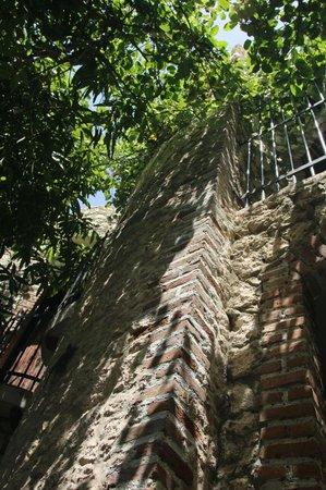 Guesthouse Las Piedras: area