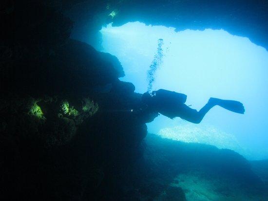 Paradise Diving Malta: Mergulho em Comino