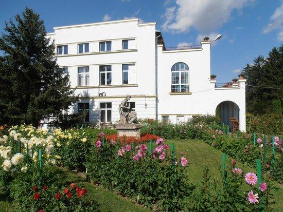 Hotel Belvedere: botanical garden
