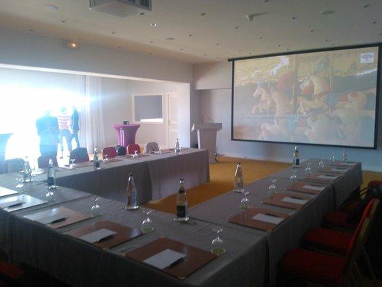 فندق نغرسكو: Conference Facilities