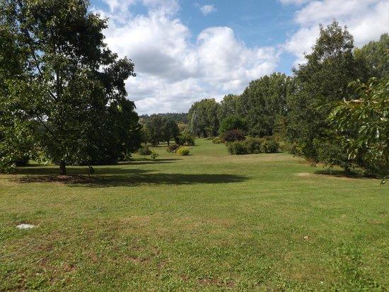 Arboretum du château de Neuvic d'Ussel : arborétum