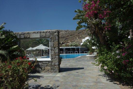 صن رايز هوتل: pool area