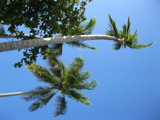جراند بايا برينسيب إلبورتلو - شامل جميع الخدمات: beach
