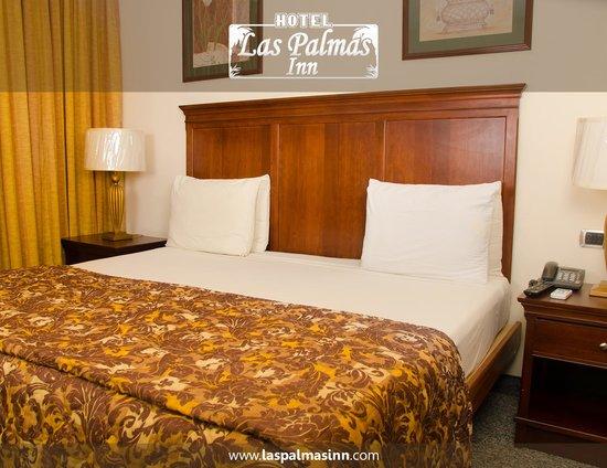 Hotel Las Palmas Inn: Habitaciones (Hotel Las Palmas Inn)