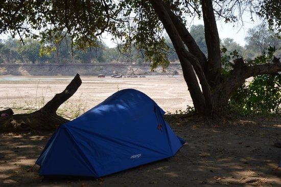 Croc Valley Camp: Kampeerterrein