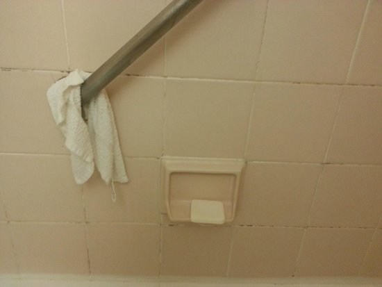 The Manhattan at Times Square Hotel : Mold Problem in Tub