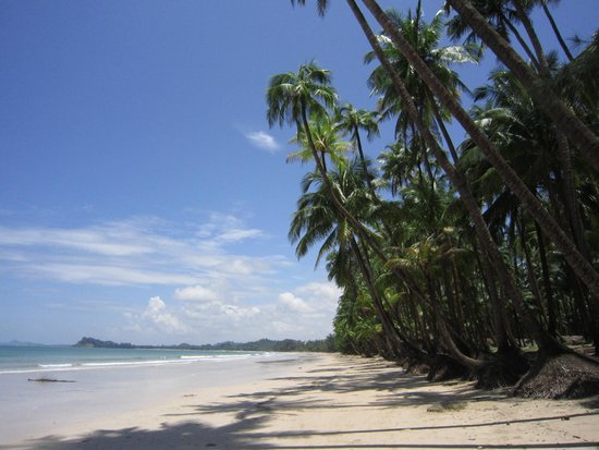 U Andy Boat Trips - Private Tours : our pristine beach that we launch from for day trips!