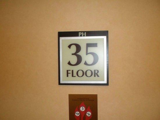 ذا سيجنيتشر آت إم جي إم جراند: Floor 35
