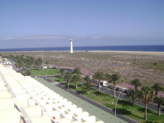 أبارتامينتوس بالم جاردن: Vista dal terrazzo