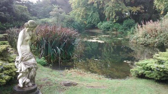 Grinkle Park Hotel: Pond