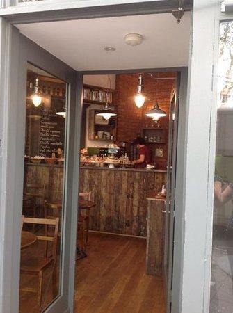 The Coffee Tree: come innnnn