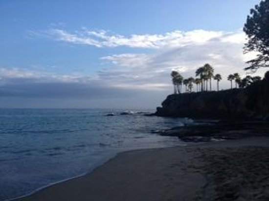 Shaw 39 S Cove Is Just A Walk Away Picture Of Laguna