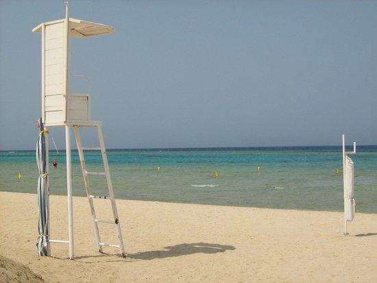 فندق جورجونيا بيتش: Spiaggia2