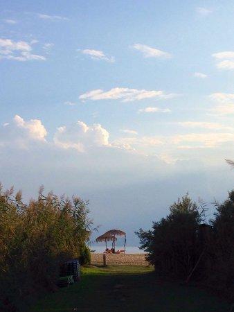 Hotel Despotiko: From hotel despotiko to the beach