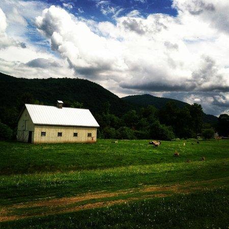 Amee Farm: Stunning surroundings