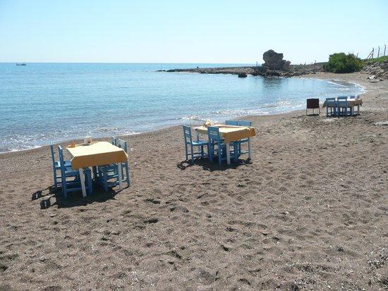 Yakamoz Restorant: yakamoz beach restaurant