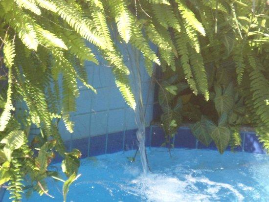 Magnu's Pousada: Na piscina.