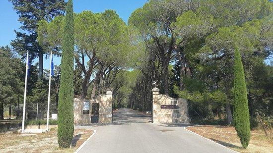 Chateau d'Estoublon: Gate to the property park
