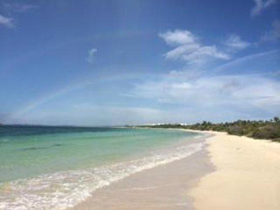 Memories Flamenco Beach Resort: hotel beach