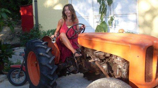 Azienda Agrituristica Masseria Montenero: trattore d'epoca