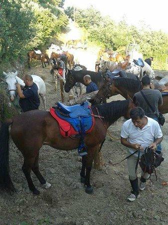 Azienda Agrituristica Masseria Montenero: i cavalieri del Taburno ospiti dell'Azienda Agrituristica Masseria Montenero