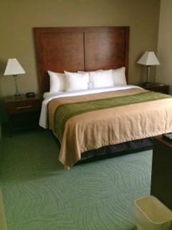 Comfort Inn : Queen bed with updated furniture