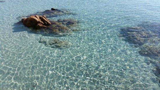 Spiaggia del Principe: Settembre 2014