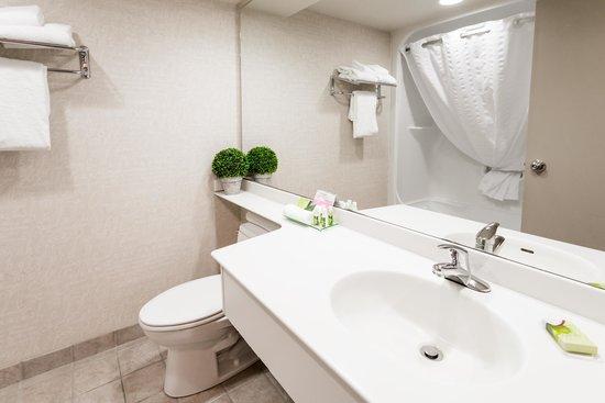 إجزكيوتيف رويال إن هوتل آند كونفرنس سنتر: Standard Bathroom