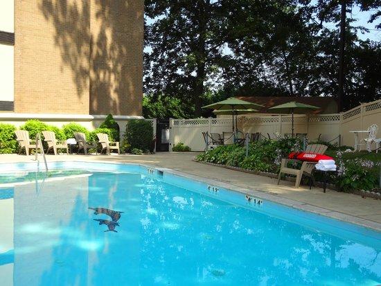 Comfort Inn Shady Grove: Pool