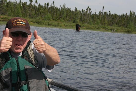Twin Maple Outdoors: Moose Tours