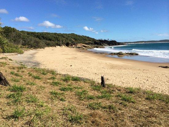 ذي إدج أون بيتشيز: Beach at 1770