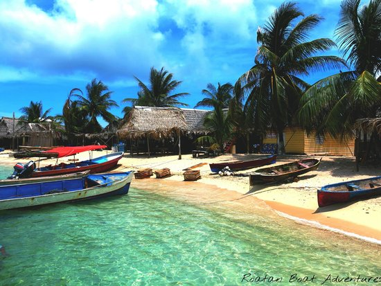 Roatan Boat Adventures: Stop for lunch in Cayos Cochinos