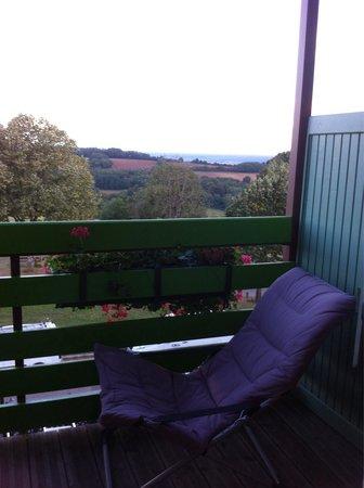 Hotel Le Chalet du Mont Roland: Vue de la chambre
