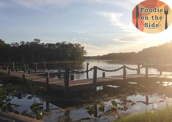Clark's Fish Camp: View