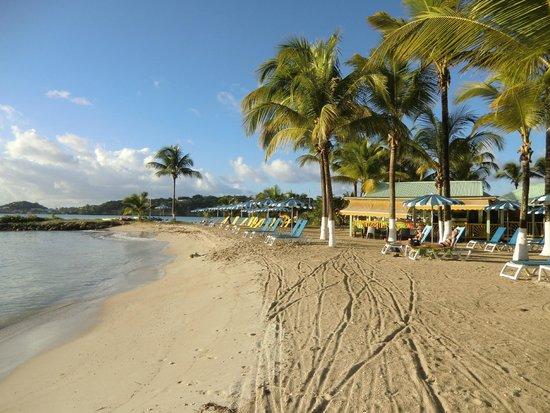 Hotel-Residence Canella Beach: Bord de plage avec restaurant à droite